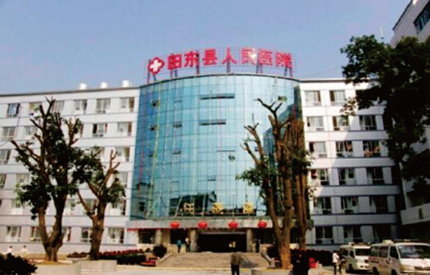 The People's Hospital of Tiandong county